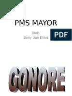 Ppt Pms Mayor
