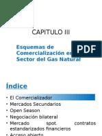 CAPITULO III - Esquemas de Comercialización en El Sector Del Gas Natural