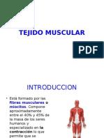 Tejido Muscular 2010