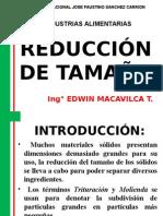 REDUCCION-TAMIZADO