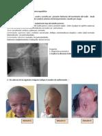T13 EMBRIOLOGIA (1)