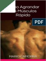Agrandar Musculos