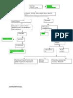 Pathway Spondilitis