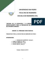 Seminario de Tesis I_USP_Borrador Final.docx