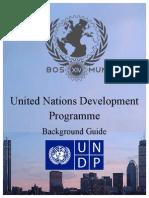 UNDP_BG