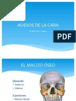 Maziso facial (presentación)