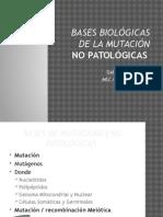 6 Bases Biológicas de La Mutación
