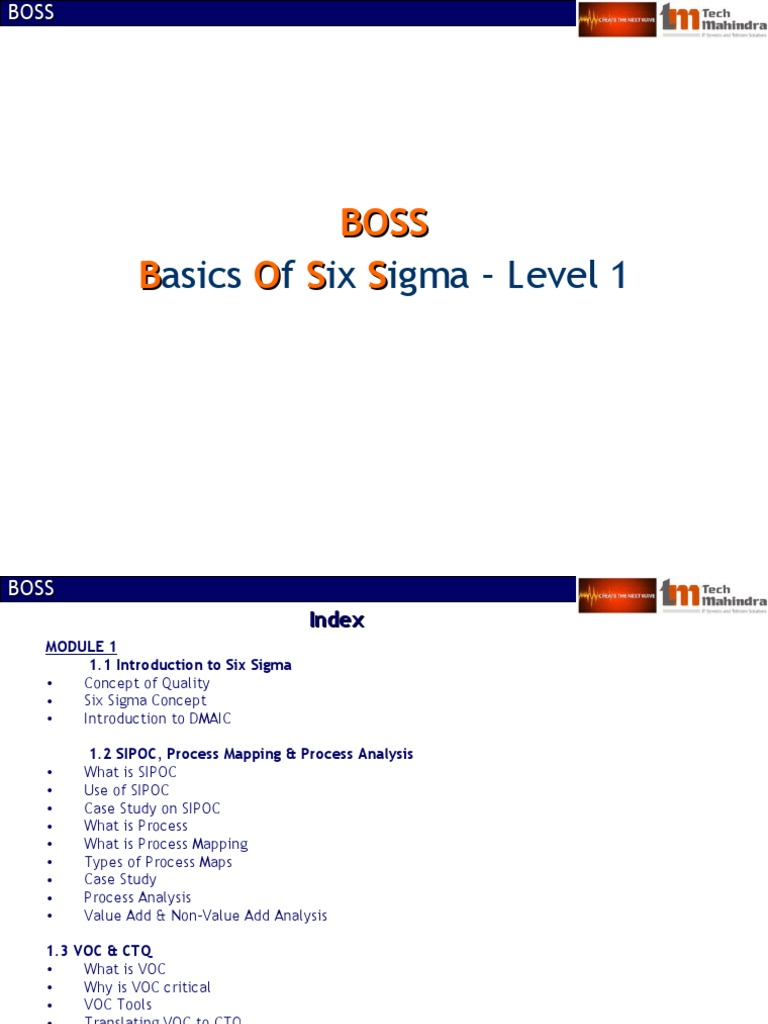 Boss module 1basics of six sigma business process six sigma biocorpaavc