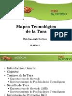 Mapeoyu Tecnologico de Tara
