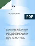 Clasificación de Virus
