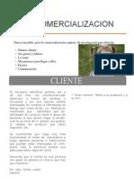 comercializacion.doc