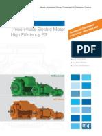 WEG-w22-three-phase-motor-technical-australia-new-zealand-market-50025541-br_mo_w22technical-catalogue_bsc-brochure-english.pdf