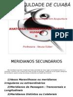 Anatomia Energetica Meridianos Secundarios