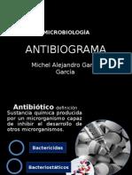 Antibiograma