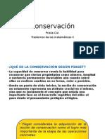 Conservación Clase 5