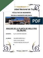 Analisis Planta de Hielo Frio El Delfin-1