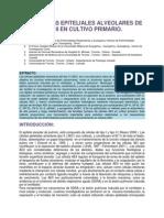 Las Células Alveolares Epiteliales de Tipo II en Cultivo Primario.