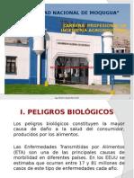 Peligros Biológicos, Fisicos y Químicos