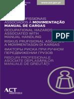 05 - Principais Riscos Profissionais Associados à Movimentacao Manual Cargas