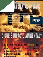 palestrasobreimpactosambientaisurbanos-101015091949-phpapp01
