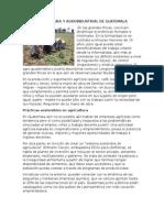 Agricultura y Agroindustrial de Guatemala