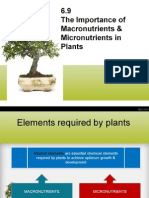 6.9 the Importance of Macronutrients & Micronutrients in Plants