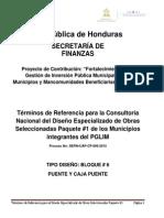 TORS Bloque 6 PuenteCajapuente