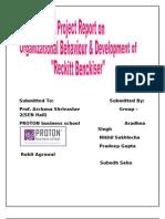 Report on Reckitt Benchiser