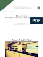 Ensaios in Vitro - Biologia Molecular, Cultivo Celular, Scaffolds e Engenharia Tecidual