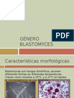 Género blastomyces
