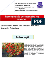 PIMENTAFinal.pptx