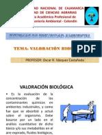 V.- Valoración Biológica