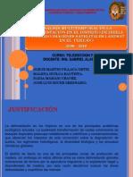 Exposicion de Teledeteccion Forestal Martin