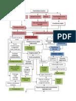 Pathway Demensia