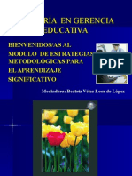 Estrategias Metodologicas Aprendizaje.ppt