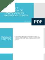 INDUCCION Y ACENTUACION DEL TRABAJO DE PARTO –.pptx