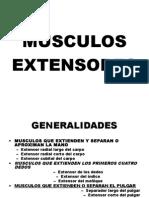 clase11extensoresdelantebrazoymano-130821150033-phpapp01