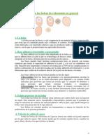 Caracteristicas de las bolsas de colostomia.pdf