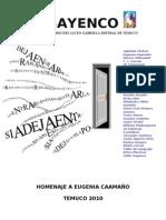 Revista SAYENCO