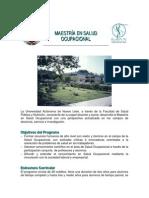 Maestria en Salud Ocupacional