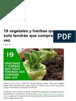 19 Vegetales y Hierbas Que Solo Tendrás Que Comprar Una Vez _ EcoInventos