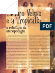 Caetano Veloso e a Tropicalia.pdf