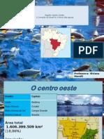 Presentación Region Centro Oeste Brasil