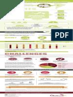 Quinoa_Infographic.pdf