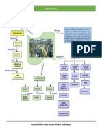 Mapa Conceptual Sociedad Industrial