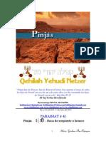 Parashat Pinjás # 41 Adul 6015.pdf