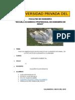 proyecto-de-ingenieria-ambiental.docx
