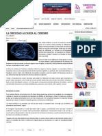 La Obesidad AlcanLa obesidad alcanza al cerebro za Al Cerebro - Investigación y Desarrollo