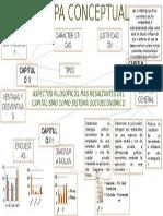 Mapa Conceptual CAPITALÍSMO