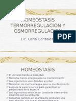 Homeostasis TermoRegulacion y Osmostasis